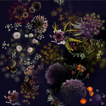 jakob_schlaepfer_-print_flower_explosion