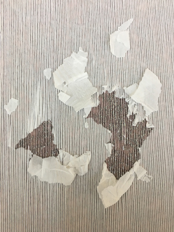 jakob_schlaepfer_impression_plissee_ripped_paper